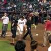 max-domi-diamondbacks3